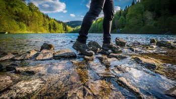 Wanderregion Willingen – Erlebnisreicher Urlaub zwischen Diemelsee und Uplandsteig